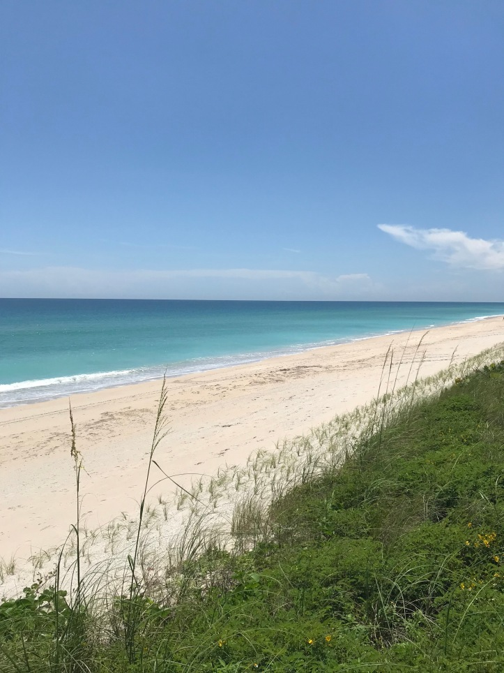 East Florida Barrier Island